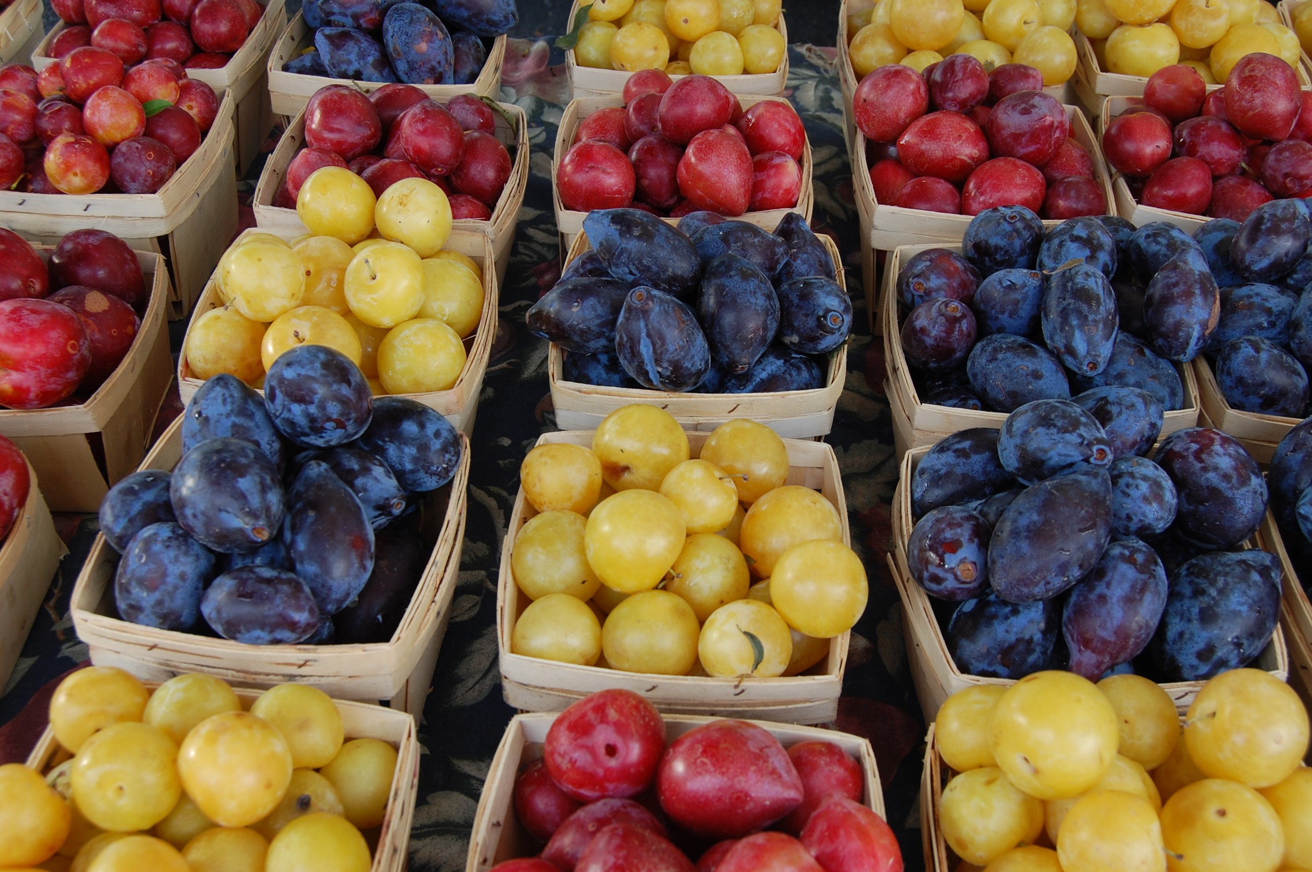 Groups of different colored plums